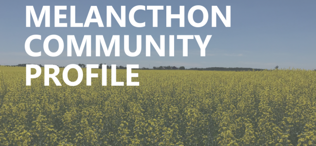 Document cover photo - canola field